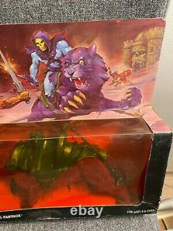 MOTU MISB SKELETOR & PANTHO GIFT SET! ULTRA RARE, AFA IT! He-man Vintage