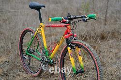 Ultra rare Rhygin Rasta Ra Juke steel vintage mtb 18 frame 26er